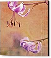 Duet 05c Canvas Print by Aimelle