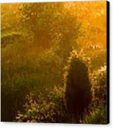 Early Gloaming Canvas Print by Ron Jones