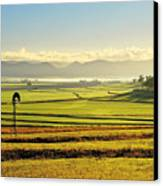 Early Morning Pastoral Scene With Keyline Plowing Near Warwick, Queensland, Australia Canvas Print