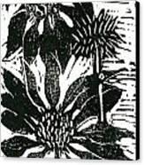 Echinacea Block Print Canvas Print