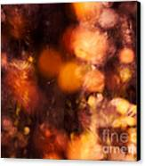 Fading Fall Flame Canvas Print