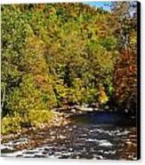 Fall Along Elk River Canvas Print by Thomas R Fletcher