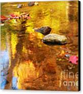 Fall Color In Stream Canvas Print