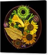 Fall Colors Canvas Print by J Arthur Davis