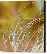 Fall Grass Canvas Print