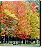 Fall In Michigan Canvas Print by Optical Playground By MP Ray