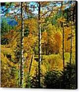 Fall In The Sierras Canvas Print by Helen Carson