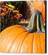 Fall Pumpkin Canvas Print by Kimberly Perry