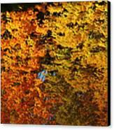 Fall Textures In Water Canvas Print by LeeAnn McLaneGoetz McLaneGoetzStudioLLCcom