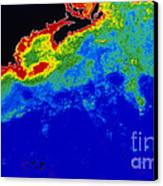 False Col Satellite Image Canvas Print by Dr. Gene Feldman, NASA Goddard Space Flight Center