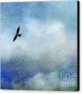 Far Above Canvas Print by Judi Bagwell