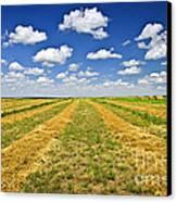 Farm Field At Harvest In Saskatchewan Canvas Print