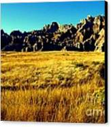 Fields Of Gold Canvas Print by Karen Wiles
