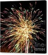 Firework Canvas Print by Meandering Photography