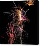 Fireworks Canvas Print by Cindy Singleton