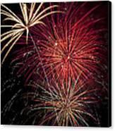 Fireworks Canvas Print by Garry Gay