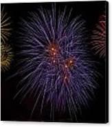 Fireworks Canvas Print by Joana Kruse