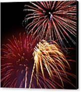 Fireworks Wixom 3 Canvas Print by Michael Peychich