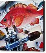 Fish Bookplates And Tackle Canvas Print by Garry Gay