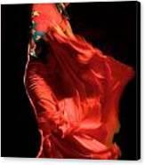 Flamenco Canvas Print by Tim Kahane
