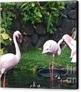 Flamingo Party Canvas Print