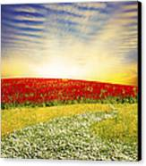 Floral Field On Sunset Canvas Print by Setsiri Silapasuwanchai