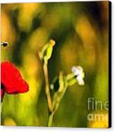 Flower And Bee Canvas Print by Odon Czintos