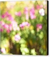 Flower Garden In Sunshine Canvas Print