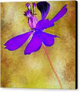 Flower Take Flight Canvas Print by Judi Bagwell