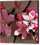 Flowering Crabapple Posterized Canvas Print