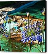 Flowers Canvas Print by Jenny Senra Pampin
