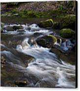 Flowing Love Canvas Print by Victoria Ashley