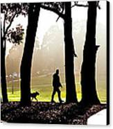 Foggy Day To Walk The Dog Canvas Print