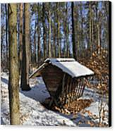 Food Point For Animals In Winterly Forest Canvas Print by Matthias Hauser