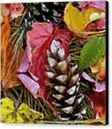 Forest Floor Portrait Canvas Print