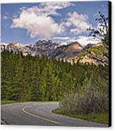 Forest Road In Kananaskis Country Canvas Print by Tatiana Boyle