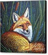 Fox In Cat Tails Canvas Print by Terri Maddin-Miller