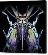 Freaky Bug Plant Canvas Print by David Kleinsasser