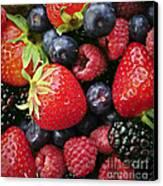 Fresh Berries Canvas Print by Elena Elisseeva