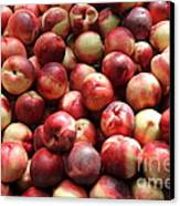 Fresh Nectarines - 5d17813 Canvas Print