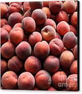 Fresh Peaches - 5d17816 Canvas Print