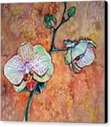 Frog On Orhids Canvas Print by Diana Shively