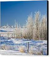 Frost-covered Trees In Snowy Field Canvas Print