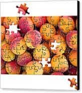 Fruit Jigsaw1 Canvas Print by Jane Rix