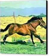 Gallope Canvas Print