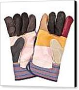 Gardening Gloves Canvas Print by Tom Gowanlock