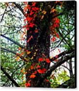 Garland Of Autumn Canvas Print