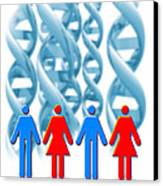Genetic Sexuality Canvas Print by Victor Habbick Visions