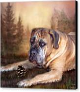 Gentle Ben Canvas Print