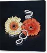 Gerberas With Pearls Canvas Print